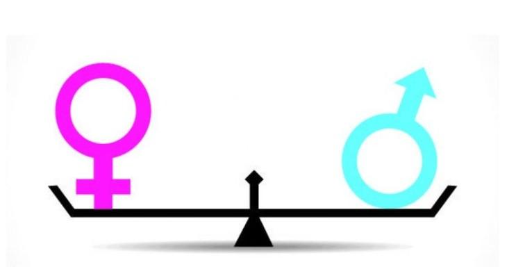 越南国会讨论性别平等国家目标  - ảnh 1