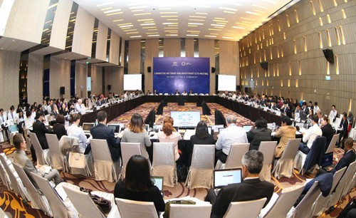 2017年APEC会议坚定茂物目标与越南的对接作用 - ảnh 1