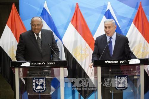 อียิปต์พยายามแสวงหามาตรการให้แก่การเจรจาสันติภาพในตะวันออกกลาง  - ảnh 1