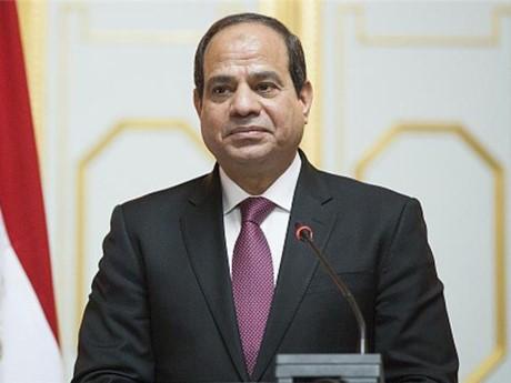 อียิปต์ผลักดันการจัดตั้งเขตการค้าเสรีในแอฟริกา  - ảnh 1