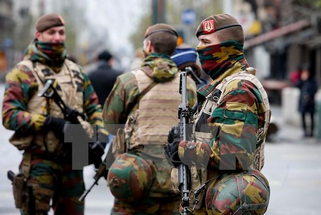 ยูโรโพลจับกุมผู้ต้องหาในคดีพิเศษทั่วภาคพื้นยุโรป 14 คน  - ảnh 1
