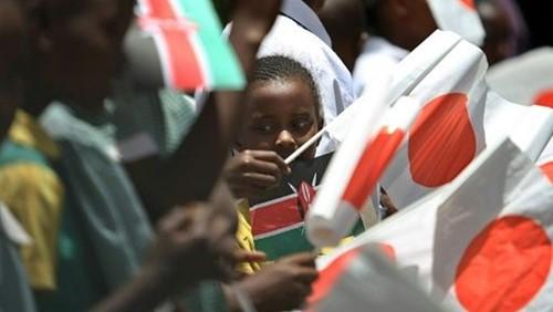 ญี่ปุ่นระบุประเด็นสำคัญต่างๆ ในความร่วมมือกับแอฟริกา - ảnh 1