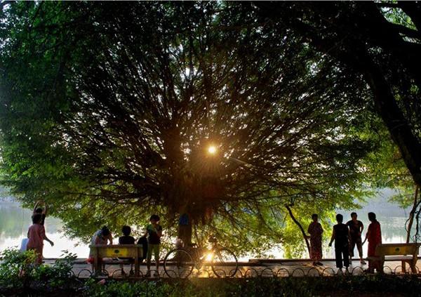 Hanoi en los últimos días del otoño  - ảnh 9
