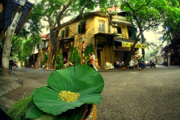 Hanoi en los últimos días del otoño  - ảnh 13