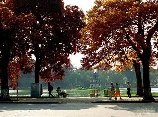 Hanoi en los últimos días del otoño  - ảnh 14