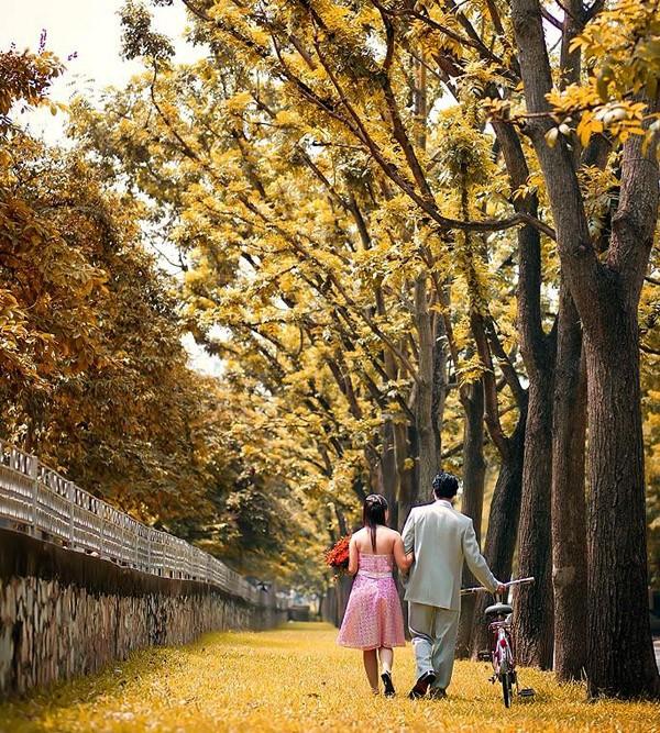Hanoi en los últimos días del otoño  - ảnh 17