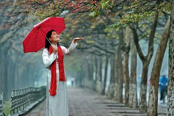 Hanoi en los últimos días del otoño  - ảnh 20