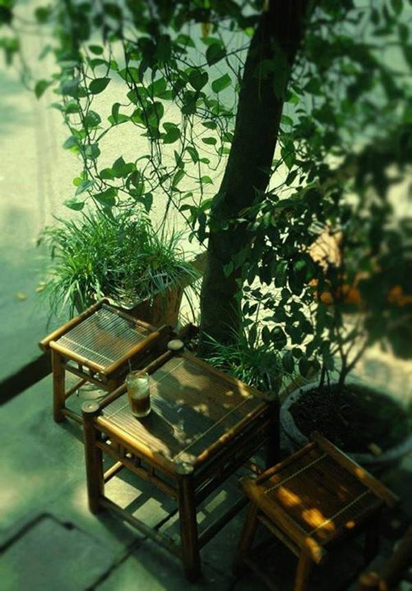 Hanoi en los últimos días del otoño  - ảnh 8
