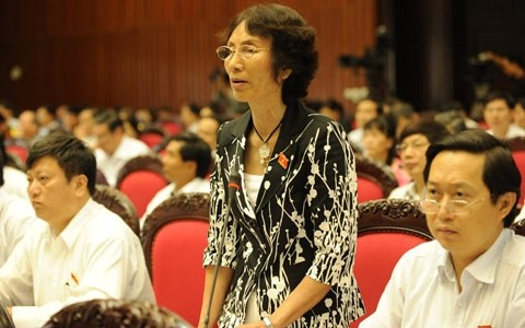 Interpelación de funcionarios del gobierno, en un Parlamento en renovación - ảnh 2
