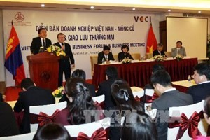 Celebran Foro Empresarial Vietnam-Mongolia en Ciudad Ho Chi Minh - ảnh 1