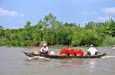 Inaugurado el Foro de Cooperación económica del delta del Mekong 2013  - ảnh 1