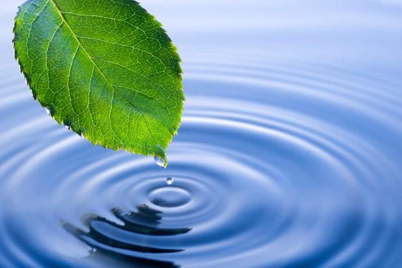 Banco Mundial ayuda gestión hídrica en Vietnam - ảnh 1