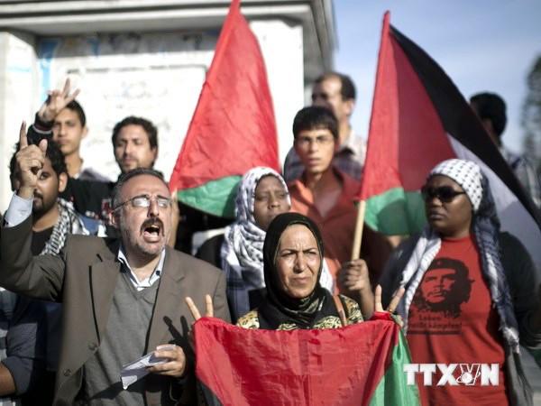 Gobierno de unidad nacional de Palestina presta al juramento - ảnh 1