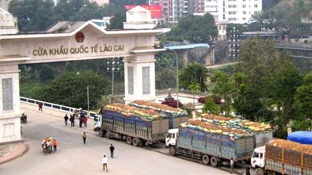 Siguen en bonanza el intercambio comercial Vietnam-China en entrada fronteriza de Lao Cai - ảnh 1