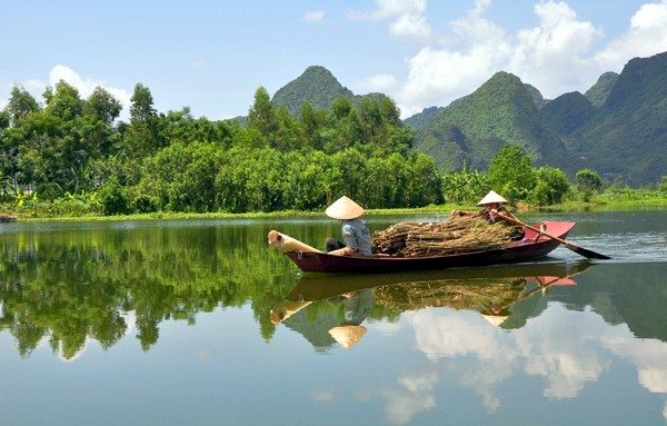 Promueven desarrollo socioeconómico en el Sur de Vietnam - ảnh 1
