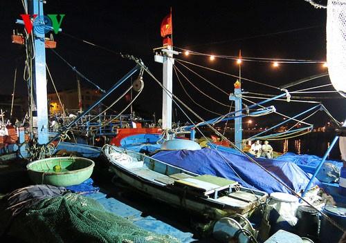 Pescadores vietnamitas mantienen trabajo con valentía en aguas violadas por China - ảnh 1