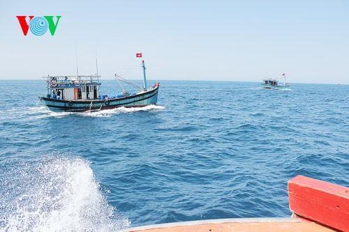 Pescadores vietnamitas mantienen trabajo con valentía en aguas violadas por China - ảnh 8