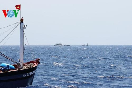 Pescadores vietnamitas mantienen trabajo con valentía en aguas violadas por China - ảnh 9
