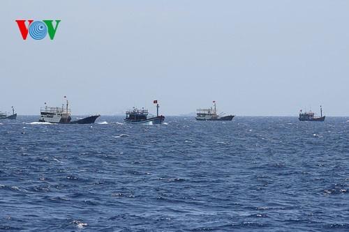 Pescadores vietnamitas mantienen trabajo con valentía en aguas violadas por China - ảnh 10