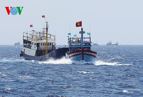 Pescadores vietnamitas mantienen trabajo con valentía en aguas violadas por China - ảnh 11