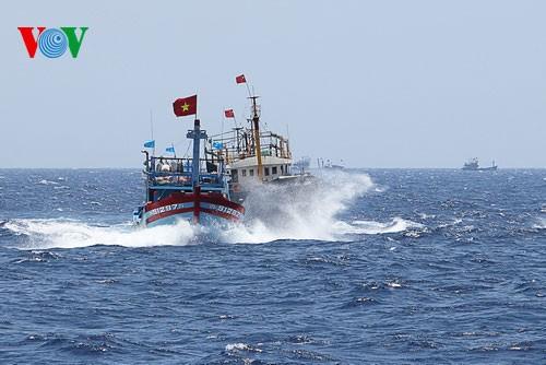 Pescadores vietnamitas mantienen trabajo con valentía en aguas violadas por China - ảnh 12