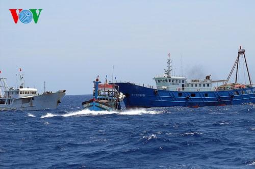 Pescadores vietnamitas mantienen trabajo con valentía en aguas violadas por China - ảnh 13