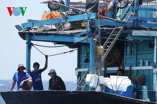 Pescadores vietnamitas mantienen trabajo con valentía en aguas violadas por China - ảnh 15