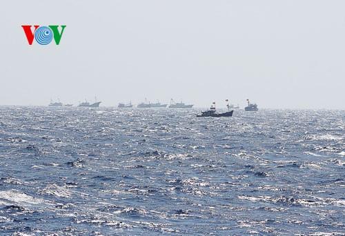 Pescadores vietnamitas mantienen trabajo con valentía en aguas violadas por China - ảnh 16