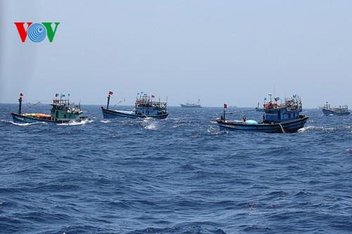 Pescadores vietnamitas mantienen trabajo con valentía en aguas violadas por China - ảnh 18