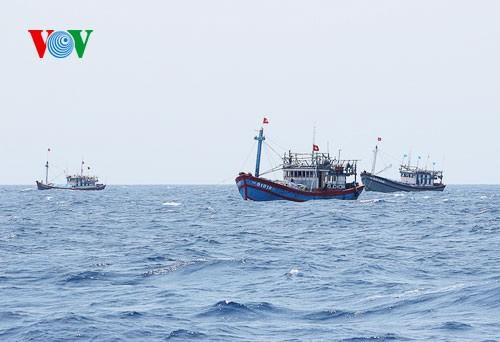 Pescadores vietnamitas mantienen trabajo con valentía en aguas violadas por China - ảnh 6