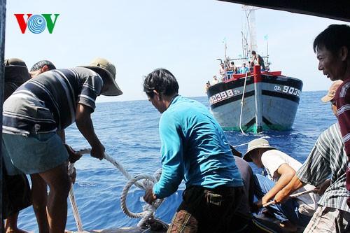 Pescadores vietnamitas mantienen trabajo con valentía en aguas violadas por China - ảnh 7