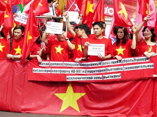 Comunidad de vietnamitas en ultramar aportan 100 mil dólares a la defensa nacional en Mar Oriental - ảnh 3