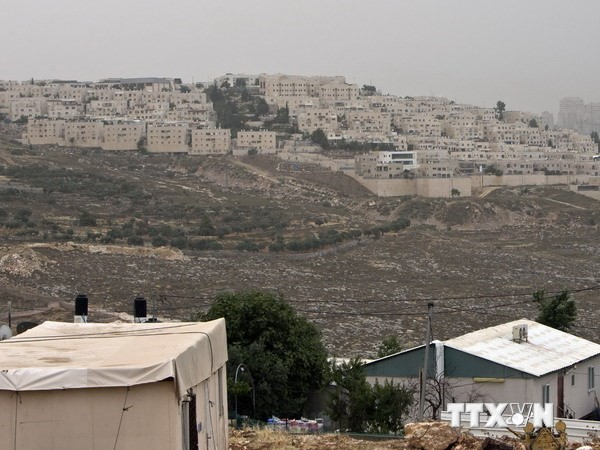 Suspende Israel parte del plan de ampliar sus asentamientos - ảnh 1