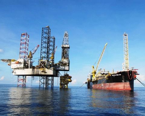 Socios petrolíferos extranjeros afirman colaboración con PetroVietnam en el Mar Oriental - ảnh 1