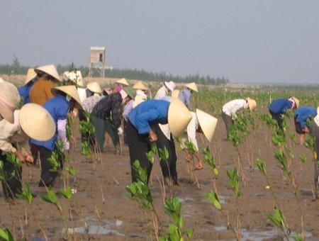 Vietnam incentiva cooperación internacional para enfrentar el cambio climático - ảnh 2