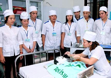 Llama Vietnam a una mayor asistencia internacional en formación de personal sanitario - ảnh 1