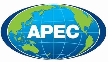 Quinta conferencia de ministros encargados de minerales de APEC - ảnh 1