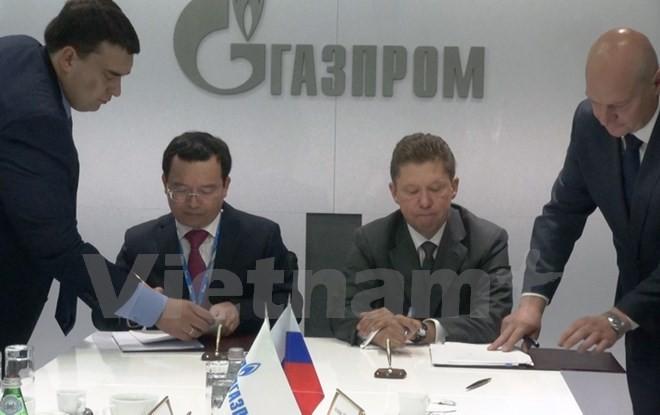 Refuerza PetroVietnam cooperación con petroleras rusas  - ảnh 1