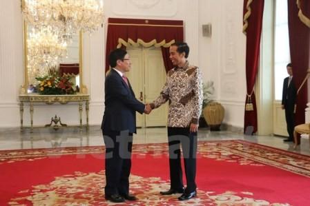Vietnam e Indonesia por alcanzar 10 mil millones de dólares en intercambio comercial - ảnh 1