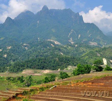 Hoang Lien Son - la cordillera famosa de la provincia Lao Cai - ảnh 7