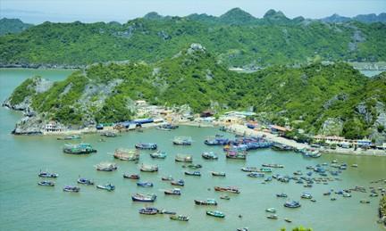 Conmemoran 57 años de la visita del presidente Ho Chi Minh a la aldea de Cat Hai - ảnh 2