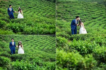 Da Nang, destino favorito para toma de fotos de matrimonios  - ảnh 11