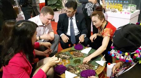Exposición en Hanoi sobre la cultura y el turismo de la región noroccidental de Vietnam - ảnh 1