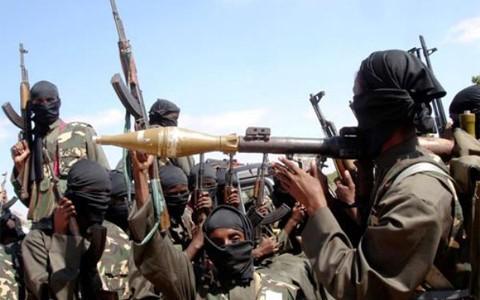 Fuerzas multinacionales aniquilan y capturan 400 insurgentes de Boko Haram  - ảnh 1
