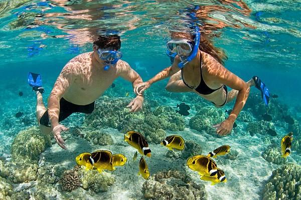 Phu Quoc por un turismo más desarrollado - ảnh 2