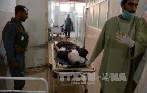 Explosivos en Afganistán dejan al menos de 12 reclutas muertos - ảnh 1