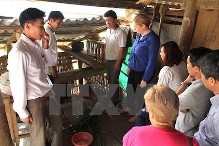 Gobierno de Irlanda respalda desarrollo en zonas de difíciles condiciones en Ha Giang  - ảnh 1