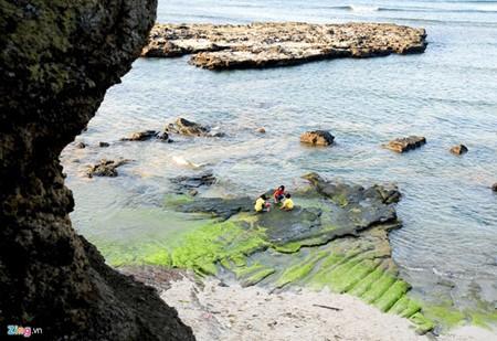 Increíble patrimonio geológico en la isla de Ly Son - ảnh 6