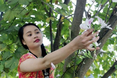 Manjares preparados con flores de Bauhinia en tierra septentrional de Vietnam - ảnh 3