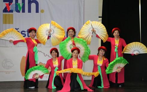 Cultura vietnamita en Festival Multiétnico Internacional en República Checa - ảnh 1